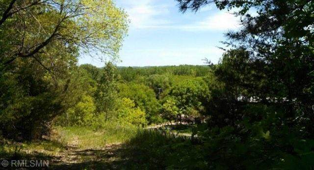XXX County Road 40, Carver, MN 55315 (#5757092) :: Twin Cities Elite Real Estate Group   TheMLSonline
