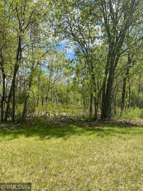 1005 11th Street SW, Little Falls, MN 56345 (#5757643) :: The Twin Cities Team