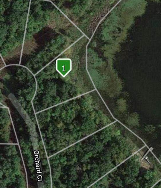 xxx Orchard Court, Browerville, MN 56438 (#6091384) :: Carol Nelson | Edina Realty