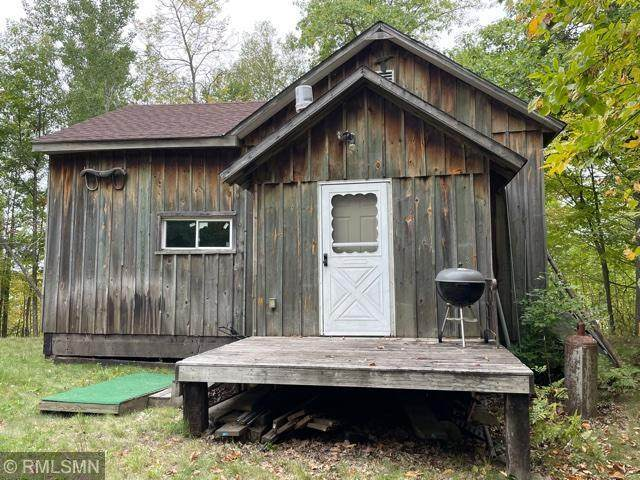 8665 Old County 52 NE, Remer, MN 56672 (#6099517) :: Happy Clients Realty Advisors