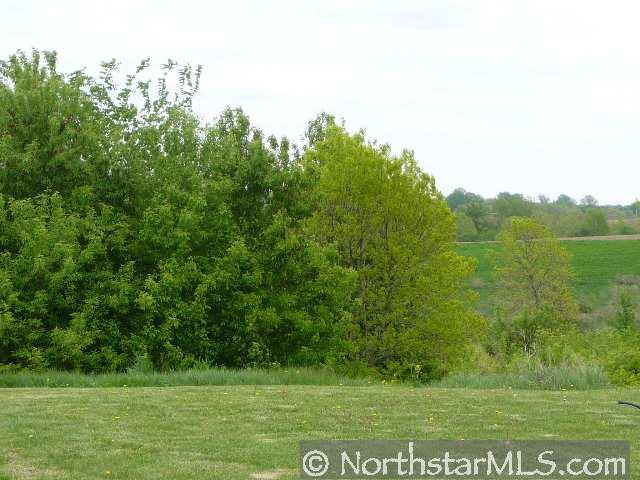 322 W Overlook Drive, Ellsworth, WI 54011 (#3923825) :: The Preferred Home Team