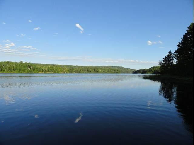 6077 Voyageurs Trail, Biwabik, MN 55708 (#4507719) :: Holz Group