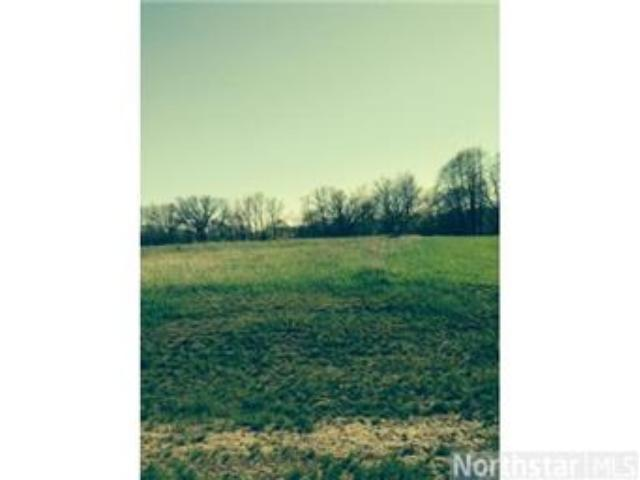 993 152nd (Lot 67) Avenue, New Richmond, WI 54017 (#4616948) :: The MN Team