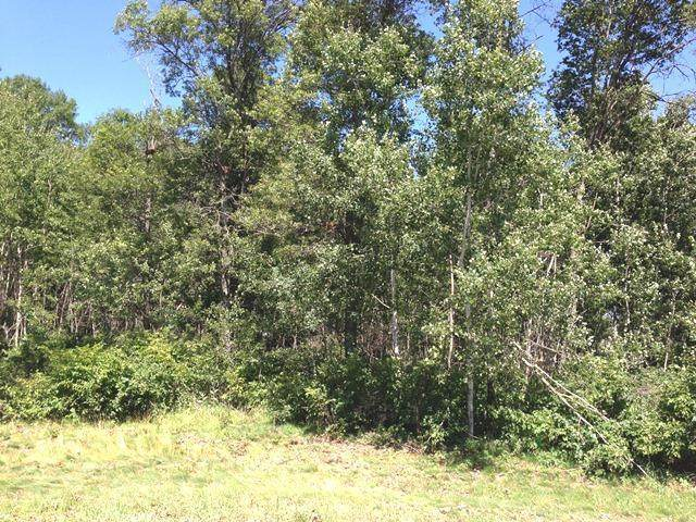 Lot 3 Emily Circle, Baxter, MN 56425 (#4686725) :: Twin Cities South