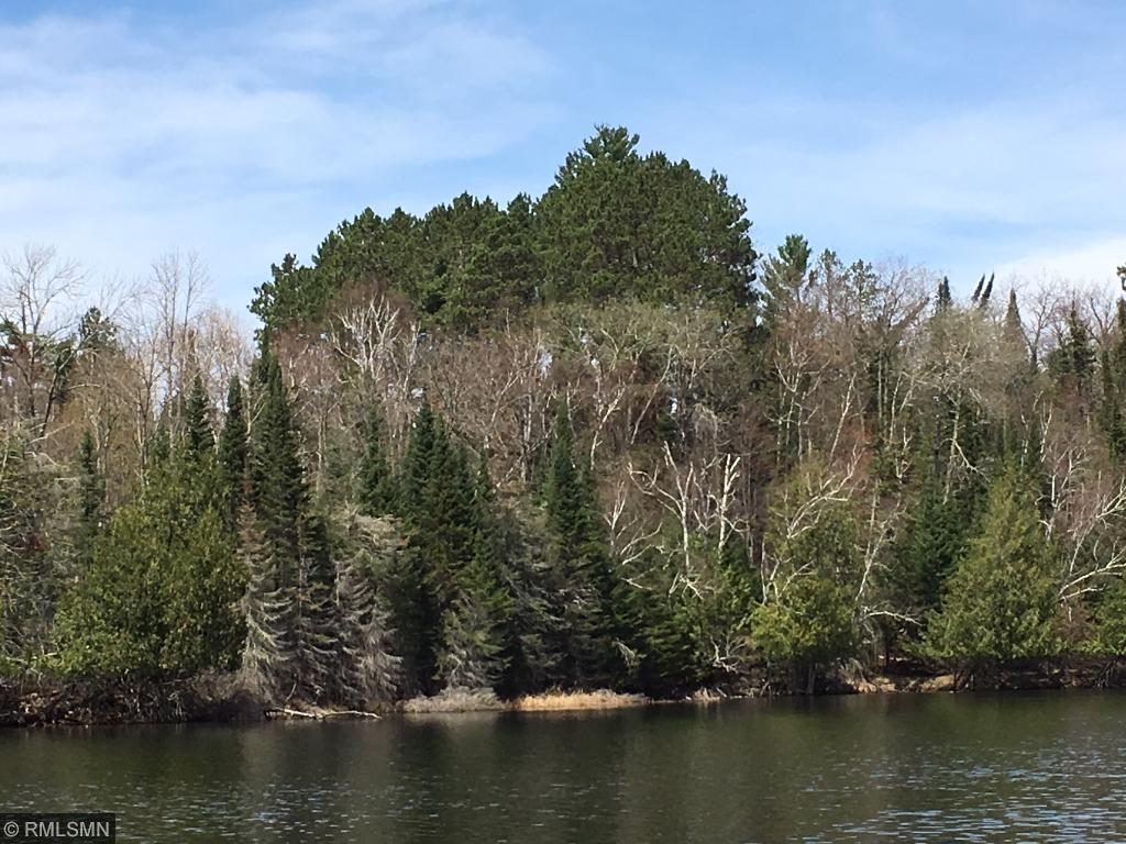 TBD Thunder Lake Drive - Photo 1