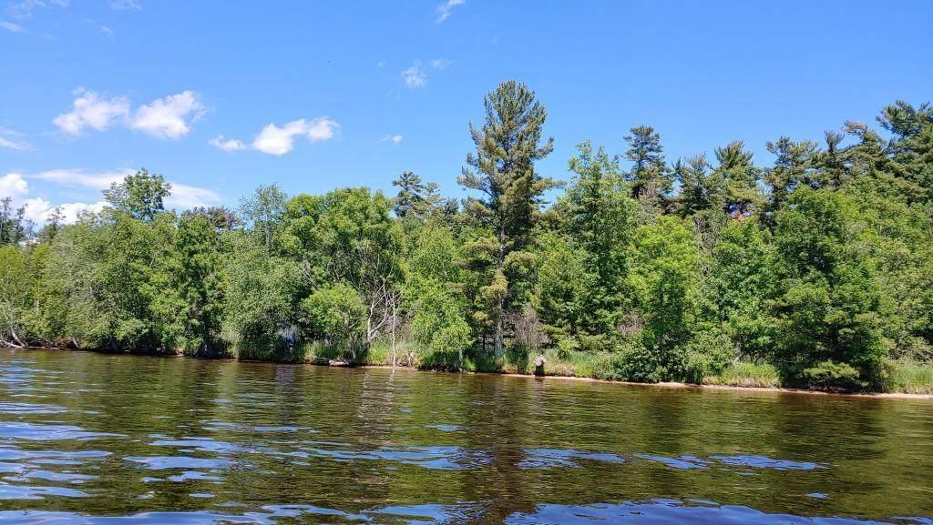95498 Pine Island - Photo 1