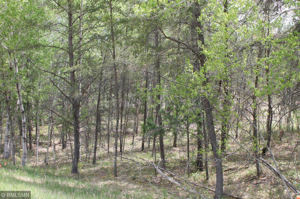 XXX Fawn Forest Lot 15 Road - Photo 1