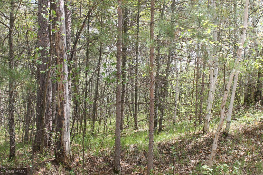 XXX Fawn Forest - Lot 13 Road - Photo 1