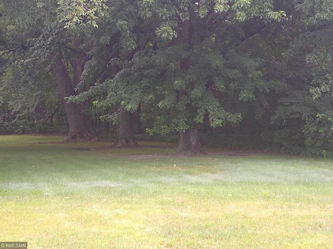 XXX Forest Blvd. N - Photo 1