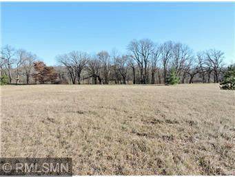 8261 119th Avenue SE, Clear Lake, MN 55319 (#5679384) :: The Twin Cities Team