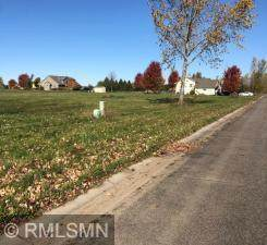831 Cottonwood Avenue, Litchfield, MN 55355 (MLS #5744749) :: RE/MAX Signature Properties