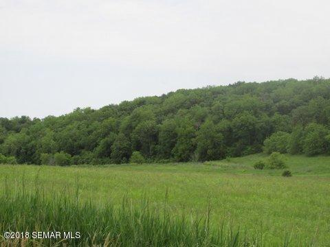 TBD 403rd Avenue, Newburg Twp, MN 55954 (MLS #5032864) :: The Hergenrother Realty Group
