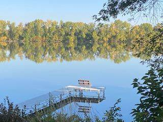 56754 Lakeshore Drive, Midway Twp, MN 56159 (#6020189) :: Servion Realty