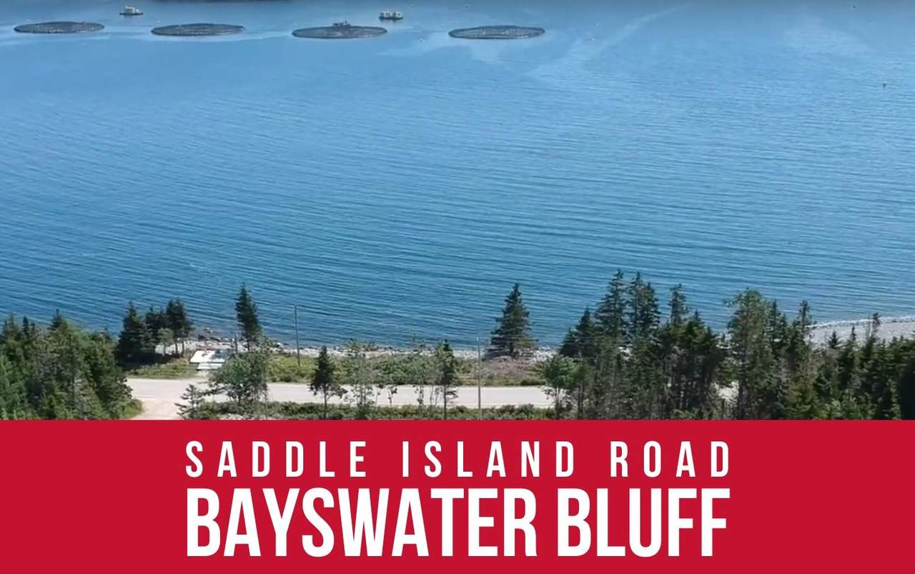 Lots Saddle Island Road - Photo 1