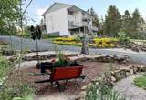 2705 Brow Of Mountain Road - Photo 1