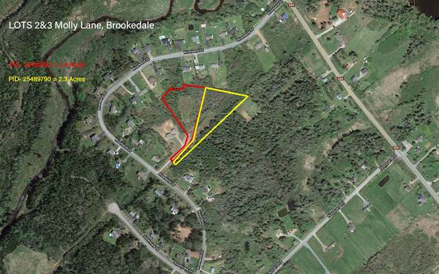 Lots 2+3 Molly Lane, Brookdale, NS B4H 3Y1 (MLS #202102098) :: Royal LePage Atlantic