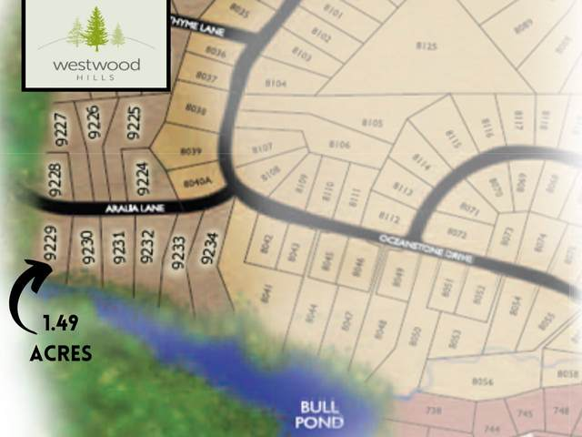 92 Aralia Lane Lot 9229, Westwood Hills, NS B3Z 0P8 (MLS #202102917) :: Royal LePage Atlantic