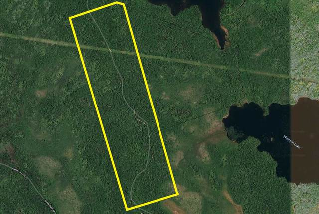 GRANT 1372 Welshtown Area, Welshtown, NS B0T 1W0 (MLS #202103187) :: Royal LePage Atlantic
