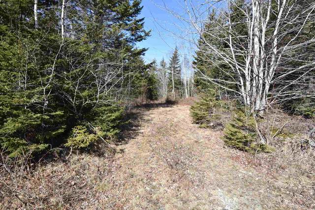 Lots Common Cross Road, Comeauville, NS B0W 2Z0 (MLS #202103932) :: Royal LePage Atlantic