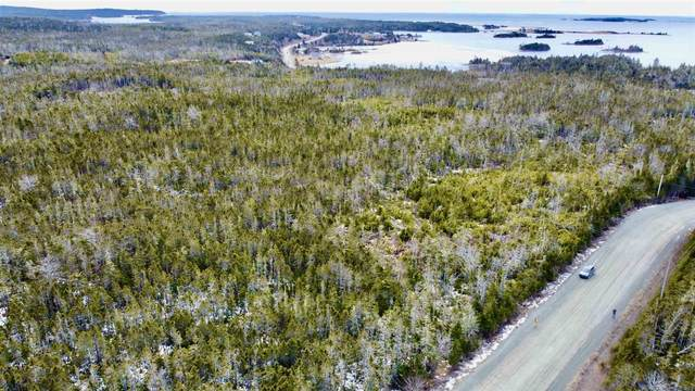 Cross Road Ga1a, Ostrea Lake, NS B0J 2L0 (MLS #202104005) :: Royal LePage Atlantic