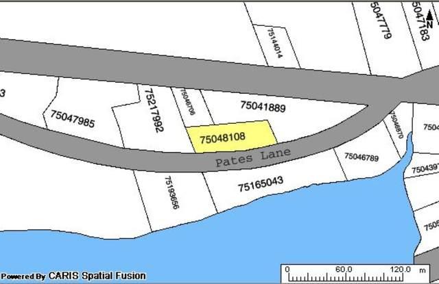 93 Pates Lane, River Bourgeois, NS B0E 2X0 (MLS #202108421) :: Royal LePage Atlantic