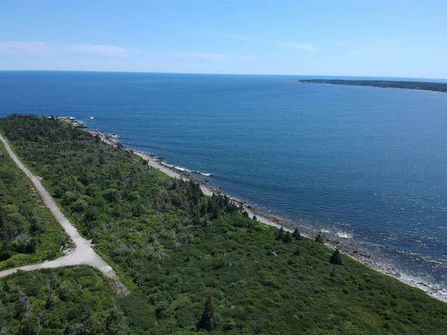 Lot 1 Paradise Point Road, Sandy Point, NS B0T 1W0 (MLS #202110468) :: Royal LePage Atlantic