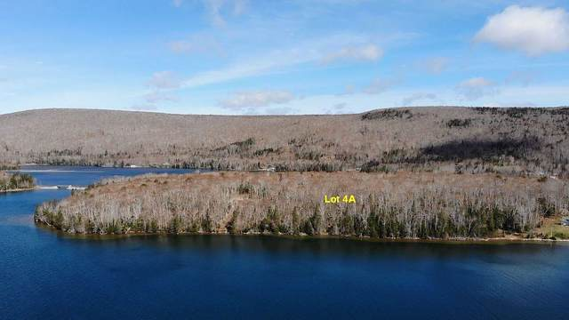 6012 Road Lot4a, Marble Mountain, NS B0E 2K0 (MLS #202111694) :: Royal LePage Atlantic