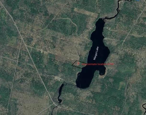 Major Road Lot Ab, Belliveaus Cove, NS B0W 3T0 (MLS #202112189) :: Royal LePage Atlantic