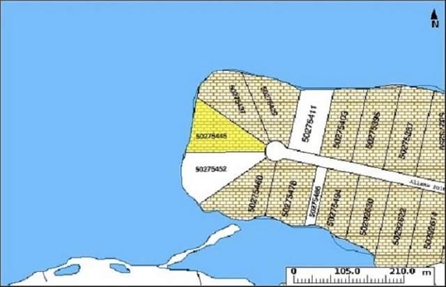 Lot 19 Allans Point Road, Malagawatch, NS B0E 2Y0 (MLS #202119284) :: Royal LePage Atlantic