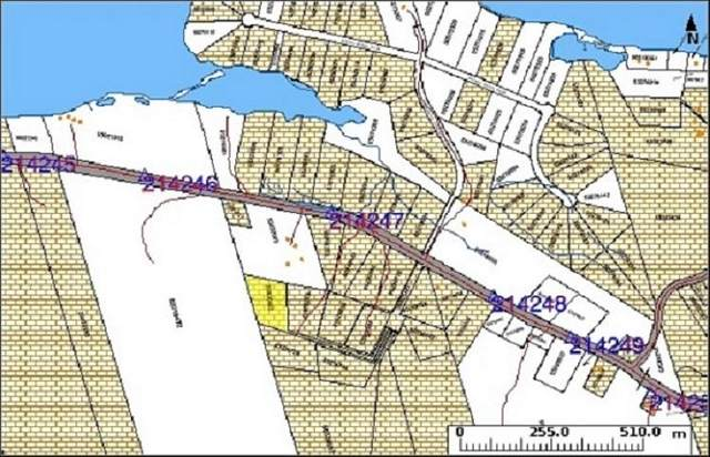 Lot 60 Allans Point Road, Malagawatch, NS B0E 2Y0 (MLS #202119287) :: Royal LePage Atlantic