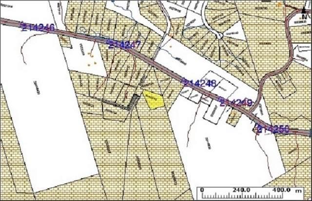 Lot 63 Allans Point Road, Malagawatch, NS B0E 2Y0 (MLS #202119290) :: Royal LePage Atlantic
