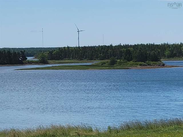 Island in Seal Cove, Louisdale, NS B0E 1V0 (MLS #202119810) :: Royal LePage Atlantic
