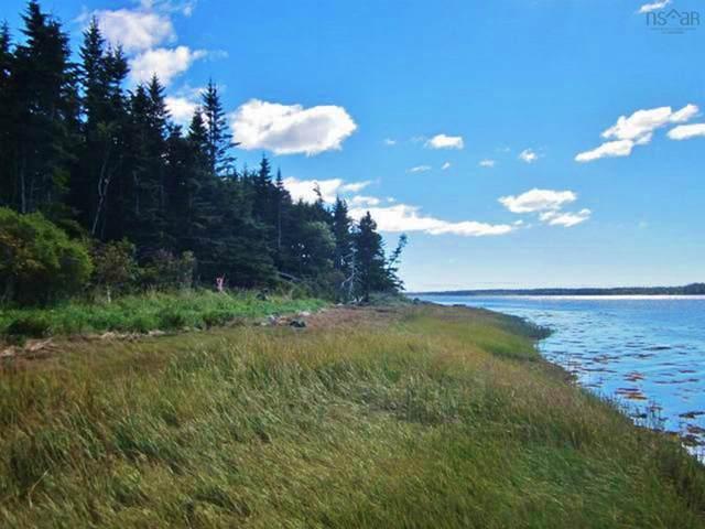 Lots 2 & 4 Tittle Road, Surettes Island, NS B0S 1C0 (MLS #202124218) :: Royal LePage Atlantic