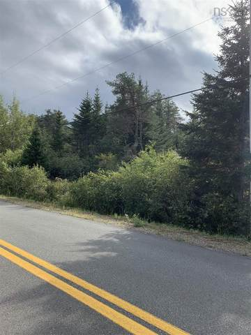 Camden Road Lot C, Salmon River, NS B6L 3C4 (MLS #202124469) :: Royal LePage Atlantic
