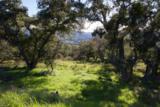 0 Cougar Ridge Road - Photo 8