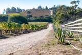 2075 Vineyard View Lane - Photo 43