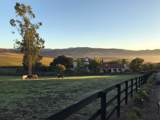2075 Vineyard View Lane - Photo 9