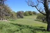 Blazing Saddle Drive - Photo 14