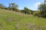 Blazing Saddle Drive - Photo 15