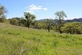 Blazing Saddle Drive - Photo 17