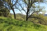 Blazing Saddle Drive - Photo 29