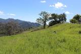 Blazing Saddle Drive - Photo 5