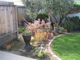 1607 Via Vista - Photo 8
