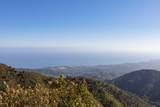 1094 Toro Canyon Road - Photo 13