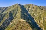 1094 Toro Canyon Road - Photo 3