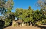 9175 Alisos Canyon Road - Photo 15