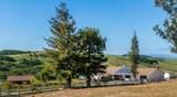 1785 Tularosa Road - Photo 1