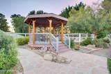 4609 Appaloosa Trail - Photo 41