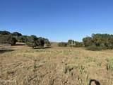 2770 Flora Road - Photo 31
