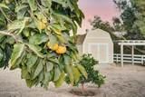 202 Las Flores Drive - Photo 53